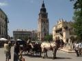 03: Die Tuchhallen und der Rathausturm auf dem Krakauer Hauptmarkt